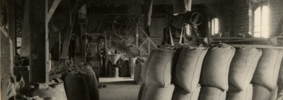 Les magasins à grain, oubliés de l'histoire, sacrifiés du patrimoine